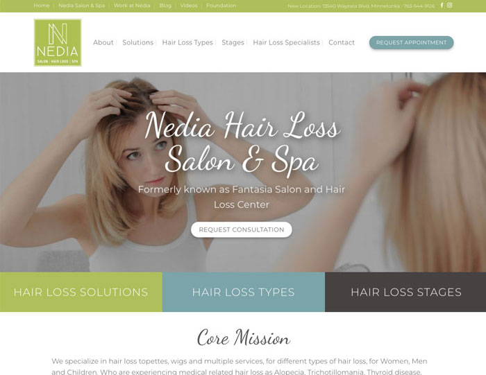 web design for salons minneapolis